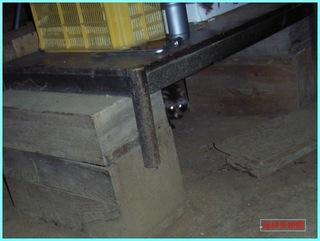 テーブル下の狸_2012-1-11.JPG