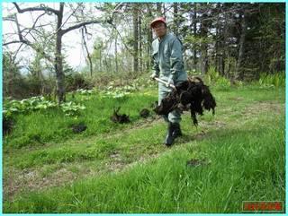 堆肥撒き1_2011-5-27.jpg