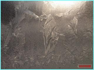 氷紋4_2012-1-4.JPG