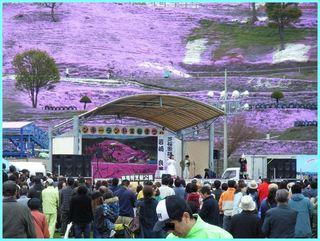 芝桜公園5_2011_5_22.JPG