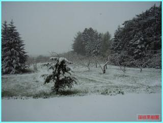 遅い吹雪_2-12-5-12.JPG