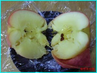 電子レンジ焼きリンゴ2.jpg