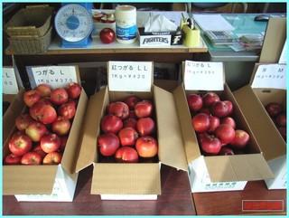 直売所_陳列紅つがる_2011-10-14.JPG